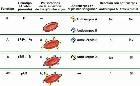 PDF ANTICUERPOS Y ANTIGENOS