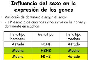 influenciados-por-el-sexo1