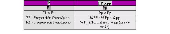 Explique Que Son Variaciones Fenotipicas Y Genotipicas