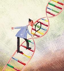 Secuenciaci n del adn desde mendel hasta las mol culas for En 2003 se completo la secuenciacion del humano