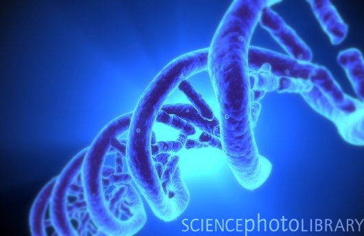 How Are Genes Being Turned Into Private Property