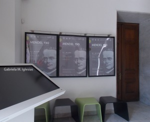 Museo de Mendel adentro para Blog