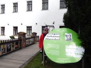 Cartel redondo del Museo de Mendel