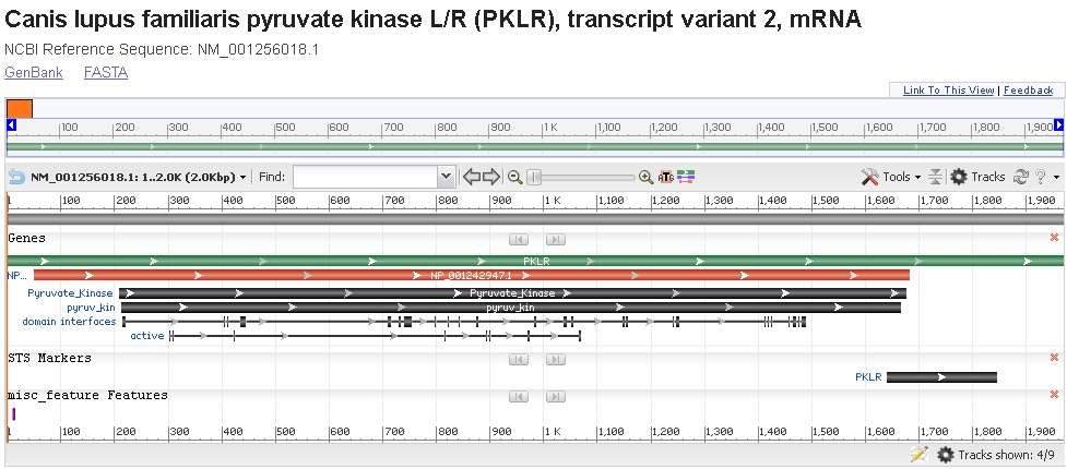 PKLR figura 1